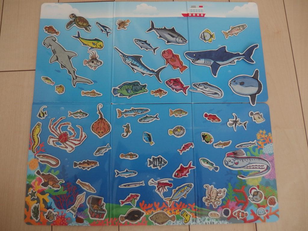 魚マグネットを全て並べた写真