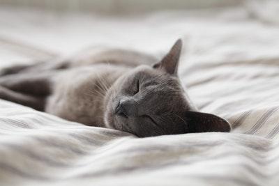 午後も仕事中に眠くならない!誰でも簡単に実践できる画期的な方法