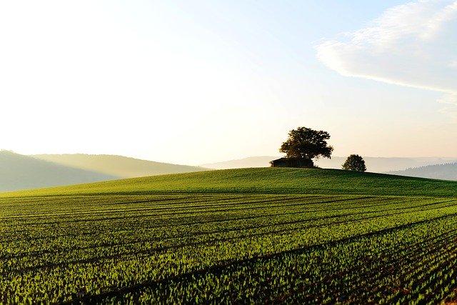 土地を選ぶ際の注意点。最低限押さえておきたい5つのポイント